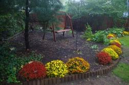 Shady Backyard Swing in Autumn