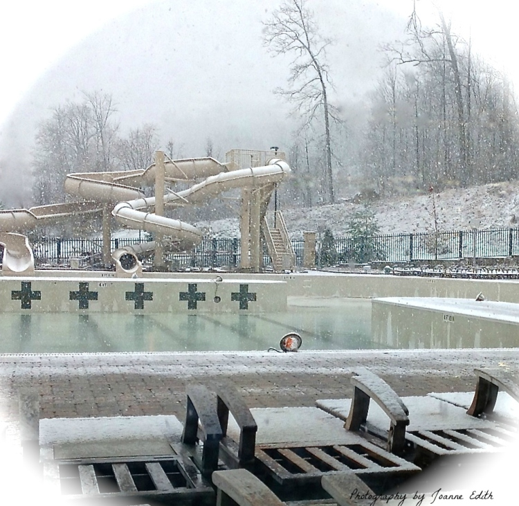 Snowy Poolscape
