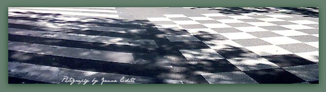 Leafy Tree Shadows belie the hardness of striped and checkered intersection.