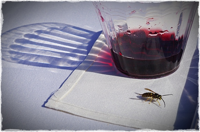 Uninvited Guest (photography by Joanne Edith)