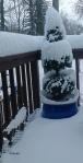 Winter: Frozen Blanket