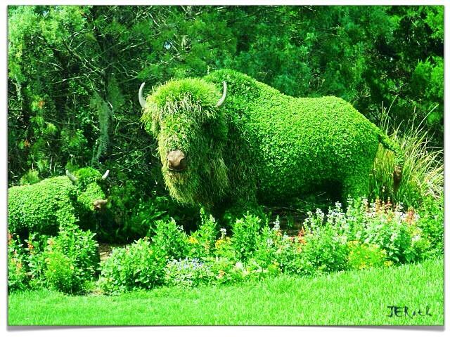 Botanical Beasts