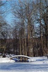 Backwoods Bridge