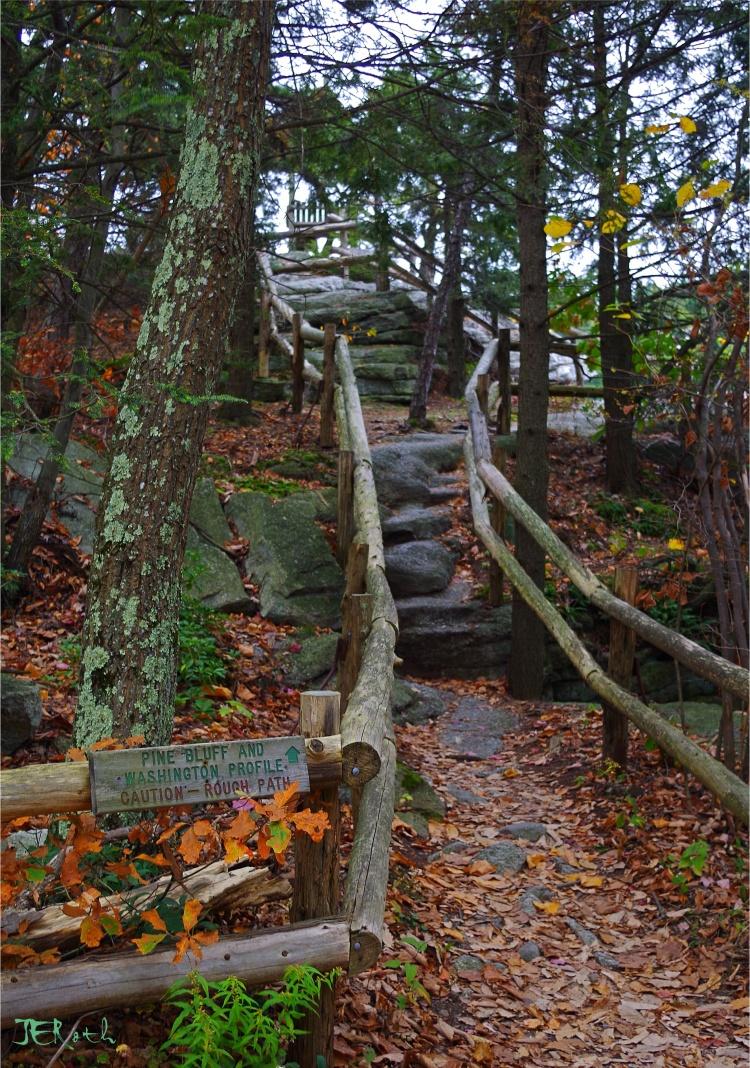 Treacherous Steps
