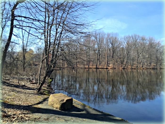 Bright wood Lake still
