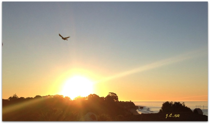 Santa Barbara Dawn